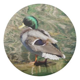 Mallard Duck Eraser