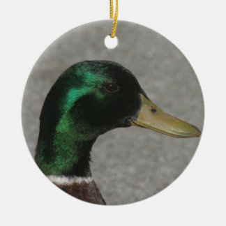 MALLARD DUCK HEAD ORNAMENT