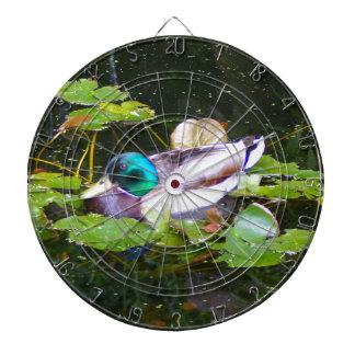 Mallard duck in a pond dartboard