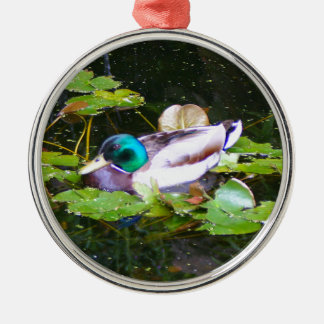 Mallard duck in a pond metal ornament