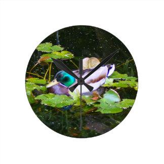 Mallard duck in a pond round clock