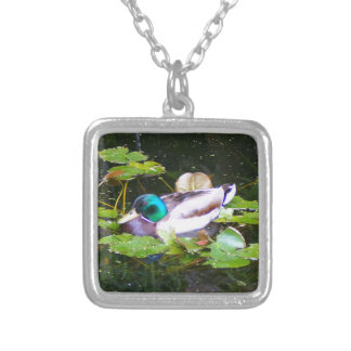 Mallard duck in a pond silver plated necklace