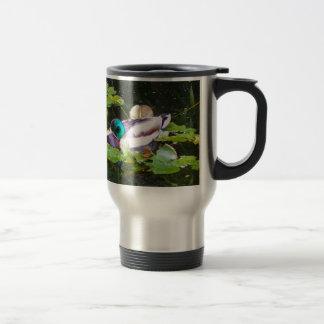 Mallard duck in a pond travel mug