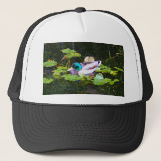Mallard duck in a pond trucker hat
