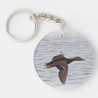 Mallard duck in flight keychain