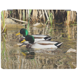 Mallard Duck iPad Smart Cover iPad Cover