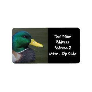 Mallard Duck Label