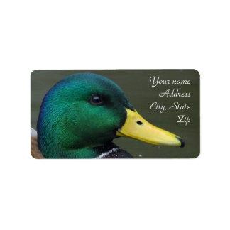 Mallard Duck Custom Address Labels