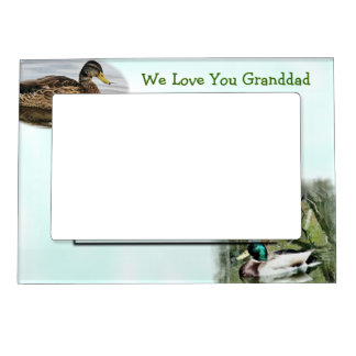 Mallard Duck Magnetic Frame2-customize Magnetic Picture Frame