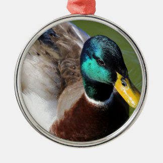 Mallard Duck Metal Ornament
