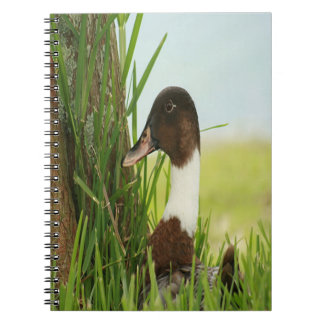 Mallard Duck Notebook