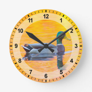 Mallard duck on orange lake, Canada Clocks