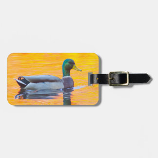 Mallard duck on orange lake, Canada Luggage Tag