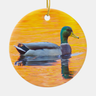 Mallard duck on orange lake, Canada Round Ceramic Ornament