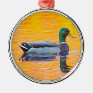 Mallard duck on orange lake, Canada Silver-Colored Round Ornament