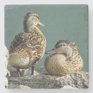 Mallard Duck Pair Stone Coaster