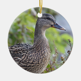 Mallard duck portrait ceramic ornament
