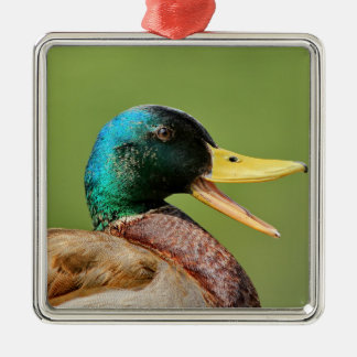 mallard duck portrait metal ornament