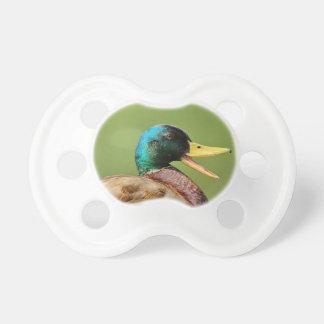 mallard duck portrait pacifier