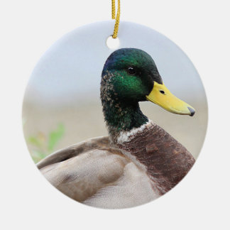 Mallard duck portrait round ceramic ornament