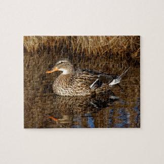Mallard Duck Reflecting Jigsaw Puzzle