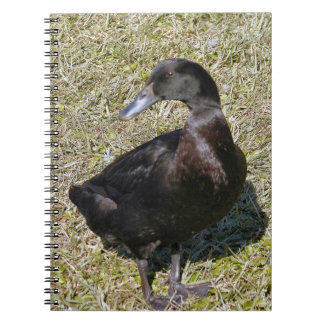 Mallard Duck Spiral Photo Notebook
