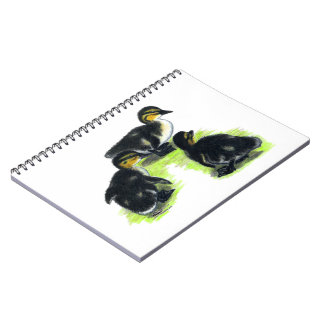 Mallard Ducklings Note Books
