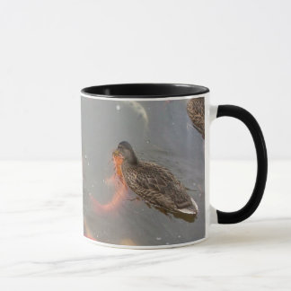 Mallard Ducks And Koi Fish Swimming Mug
