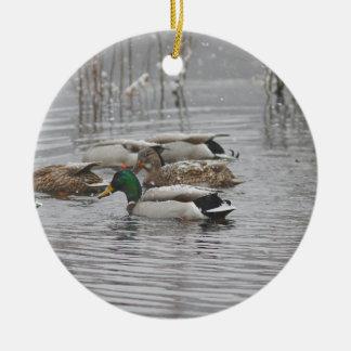 Mallard Ducks in the snow Ceramic Ornament