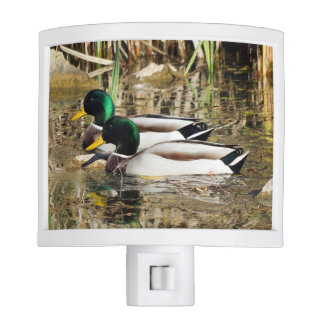 Mallard Ducks Night Light