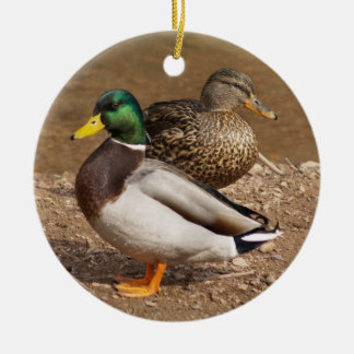 Mallard Ducks Ornament