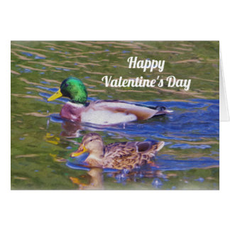 Mallard Ducks Valentine's Day Card