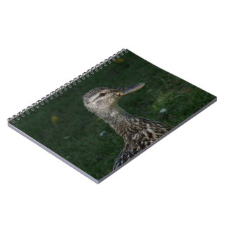 Mallard Notebooks