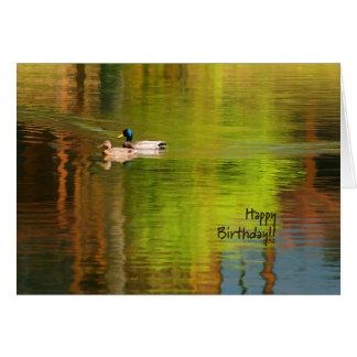 Mallard Pair - Birthday Card