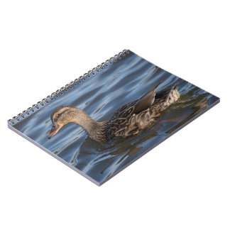 Mallard Spiral Notebook