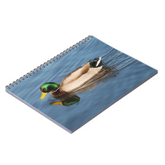 Mallard Spiral Notebooks