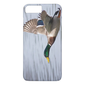 Mallard (Wild Duck) - Phone Cover