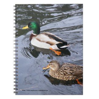 Mallards Note Books