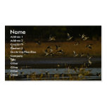 Mallards rising from water Double-Sided standard business cards (Pack of 100)