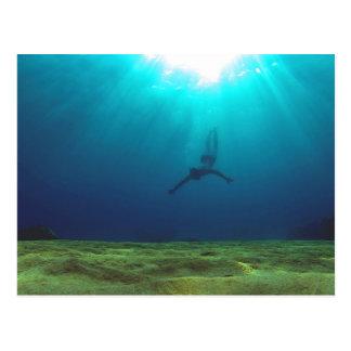 Malta Snorkeling Postcard