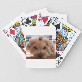 maltese 3 poker deck