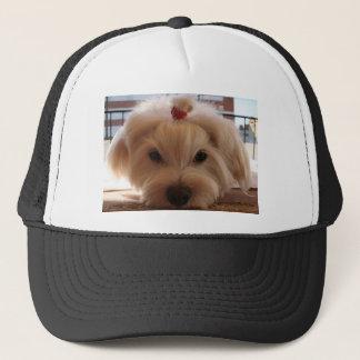 maltese 3 trucker hat