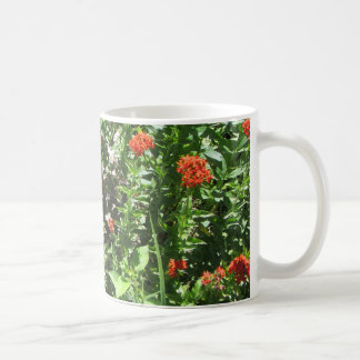 Maltese Cross and Barberry Coffee Mug