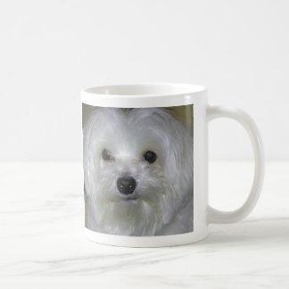 Maltese Dog Mug