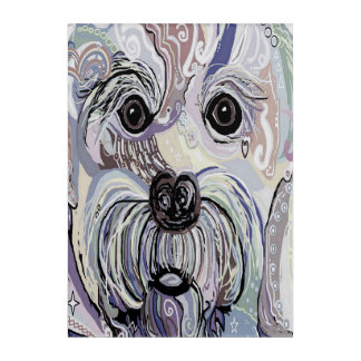 Maltese in Denim Colors Acrylic Wall Art