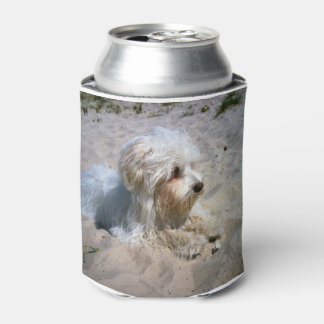maltese on beach.png can cooler