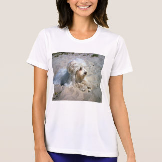 maltese on beach T-Shirt