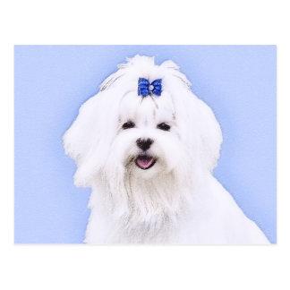 Maltese Painting - Cute Original Dog Art Postcard