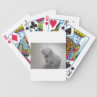 maltese pup poker deck