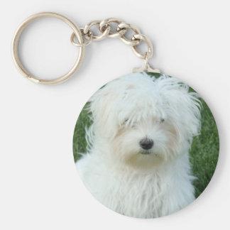 Maltese Puppies Keychain